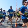 東京マラソン応援ラン29km