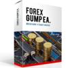 Forex Gump EAの運用成績と推奨設定【海外製EA】