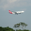 〔ピーチメルバ ~ 桃とバニラ〕 LCCってリスク高いから・・ 〔チャンギ空港に着陸する航空機の写真と共に〕