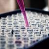 再生医療にも役立つ細胞培養技術を理解する3つのポイント
