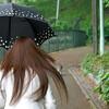折りたたみ傘を用意する