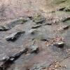 地質の日 その2