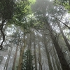 箱根の浅間山へ