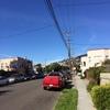サンフランシスコで大統領選挙(結果編)。