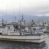 北ミサイル、イカ釣りの漁場に着弾…漁師ら怒り