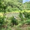 野川第一調節池(東京都小金井)
