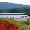 西湖(山梨県南都留)