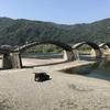 【錦帯橋】日本三名橋「錦帯橋」に行ってみました。釘を1本も使わない木造アーチ橋がお出迎え!!