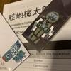 『畦地梅太郎 私の山男』展(町田市立国際版画美術館)へ行く