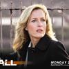 THE FALL 警視ステラ・ギブソン シーズン2