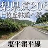 【動画】山梨県道206号 塩平窪平線