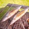 高級炭で焼く秋刀魚は美味しい