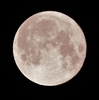 4月8日の満月は「スーパームーン」です