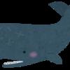 マッコウクジラ可哀想過ぎる・・・