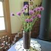 野に咲くアザミを生ける紙バンド花器を編んでみました!