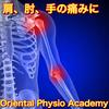 四十肩、五十肩、頚椎椎間板ヘルニア、投球障害、ばね指に対するトリガーポイント療法2019/06/22in仙台