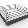 ボクシングジム体験記(4)〜リングの上のマネキン