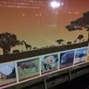 【鹿児島おでかけ】 車の群れはもうたくさん! 鹿児島市平川町「鹿児島市平川動物公園Night Zoo」後編
