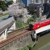 桜咲く風景『聖橋からの眺望』