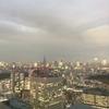 東京は東京だ