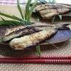【塩麹で作る魚の干物の作り方】オススメの干し方は?今が旬のカマスで詳しく説明します