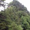 西上州(諏訪山・三ッ岩岳)の花々 3  2012.5.13,   2016.6.19