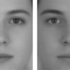 女性らしく見せるには顔のコントラストを高めるのが早道!