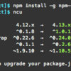 【node.js】ncu(npm-check-updates)でpackage.jsonのmodulesバージョンを一括で更新