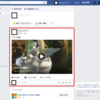 Facebook で動画のタイトル、説明、サムネイルが誤表示される