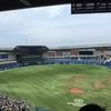 高校野球(千葉大会準決勝2試合)観戦メモ。