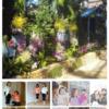 【イベント開催のお知らせ】春は新しい出会いの季節♪ 4/1(日)ちょっと新しいことやってみませんか?