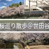 桜巡り散歩@世田谷