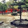 浄化のパワースポット筑前國一之宮住吉神社(福岡県)の御朱印