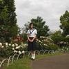 バラなど見頃の花々 部分開園中の熊本市動植物園