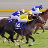 JRA所属、歴代最強牝馬を勝手にランキング。