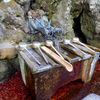 白山神社・蛇の口の水[糸魚川市能生]【新潟県の名水】