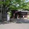 いきなりもう夏が来てるのかそれとも日本は熱帯になったのか