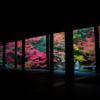 【京都】【写真】〜色彩〜