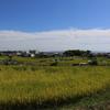 茨木市安威村 秋景色 古代史の里山