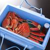 蟹の冷凍について(保存方法)