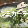 済州島(チェジュ島)グルメ*鶏胸肉しゃぶしゃぶ鍋~ソンミガーデン