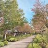北海道の秋色ガーデン