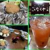 17/04/09の夕食(『なべや』さんで『かきみそ鍋』)