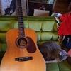 狙われたギター(笑)と、エディプス・コンプレックスの復習