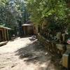 11番藤井寺から12番焼山寺へ④一本杉から秡川(左右内)迄