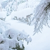 大雪のように積もるのは・・
