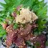 さごしの香草パン粉焼き、牛蒡とズッキーニと長芋の炒めもの、スモークサーモンのマリネ