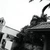 【ハワイ】【写真】写真を見てると感じること