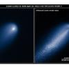 ザ・サンダーボルツ勝手連 [Comet ISON (C/2012 S1) アイソン彗星(C / 2012 S1)]