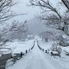 除雪の腕前は世界一か?